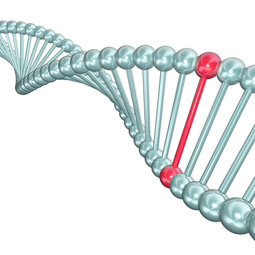An image of DNA signifying the genetic cause.