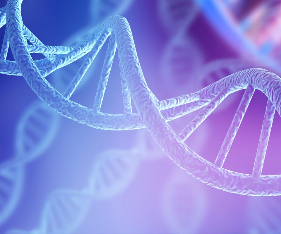 双螺旋DNA的图像